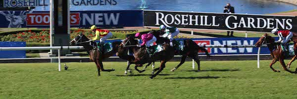 Rosehill Races